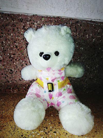 Another Teddy Teddybear Little Cute Teddybear