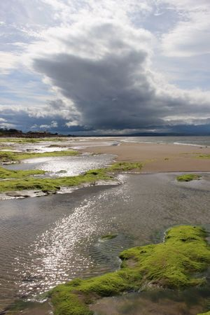 Sea and sky! Seaweed Nature_collection Beachphotography Nature Nairn Scotland Nairn Scotland Beach Beachwalk Natural Beauty Colourful Bright Green Sea And Sky Cloudy