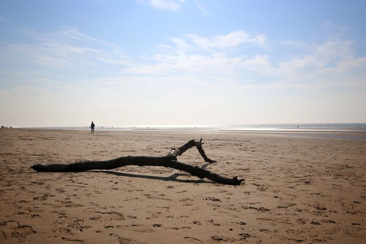 Formsby Beach Formsby Beach Liverpool Sky Beach Sea Water Land Scenics - Nature Horizon Sand Horizon Over Water Beauty In Nature Tranquil Scene Nature Tranquility Day Driftwood Cloud - Sky Non-urban Scene Idyllic Outdoors Wood