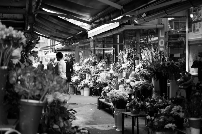 Group Of People Adult Plant Women Real People Retail  Architecture For Sale Market Flower Shop Flower Shopping Flowering Plant Small Business