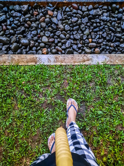 Low section of woman wearing shoes on ground