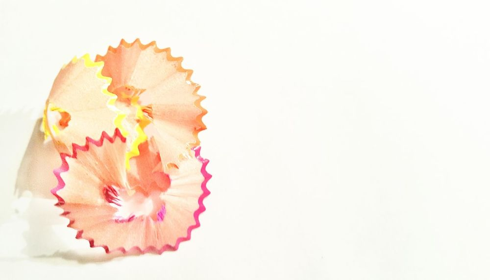 Textured  Backgrounds Abstract White Background Close-up Flower Head Surreal Multi Colored Spirale Spiral Design Fragility Pattern Paper Wooden Structures Pencil Round Shaped Object Abstract Backgrounds Minimalism Photography Simplicity Pencil Shavings Textured