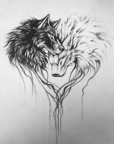 Wolf Drawing Wolf Tatto Idea Drawing