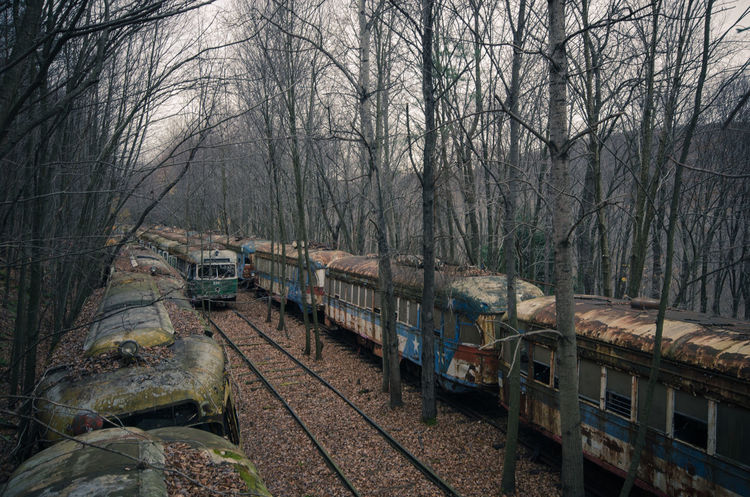 Abandoned Bare Tree Day Decay Diminishing Perspective Forest Nature No People Outdoors R Railroad Track Relaxing Rurex Rurexeploration Rust Sky The Way Forward Trains Tranquility Tree Trolley Trolleys Urban Exploration Water Weather