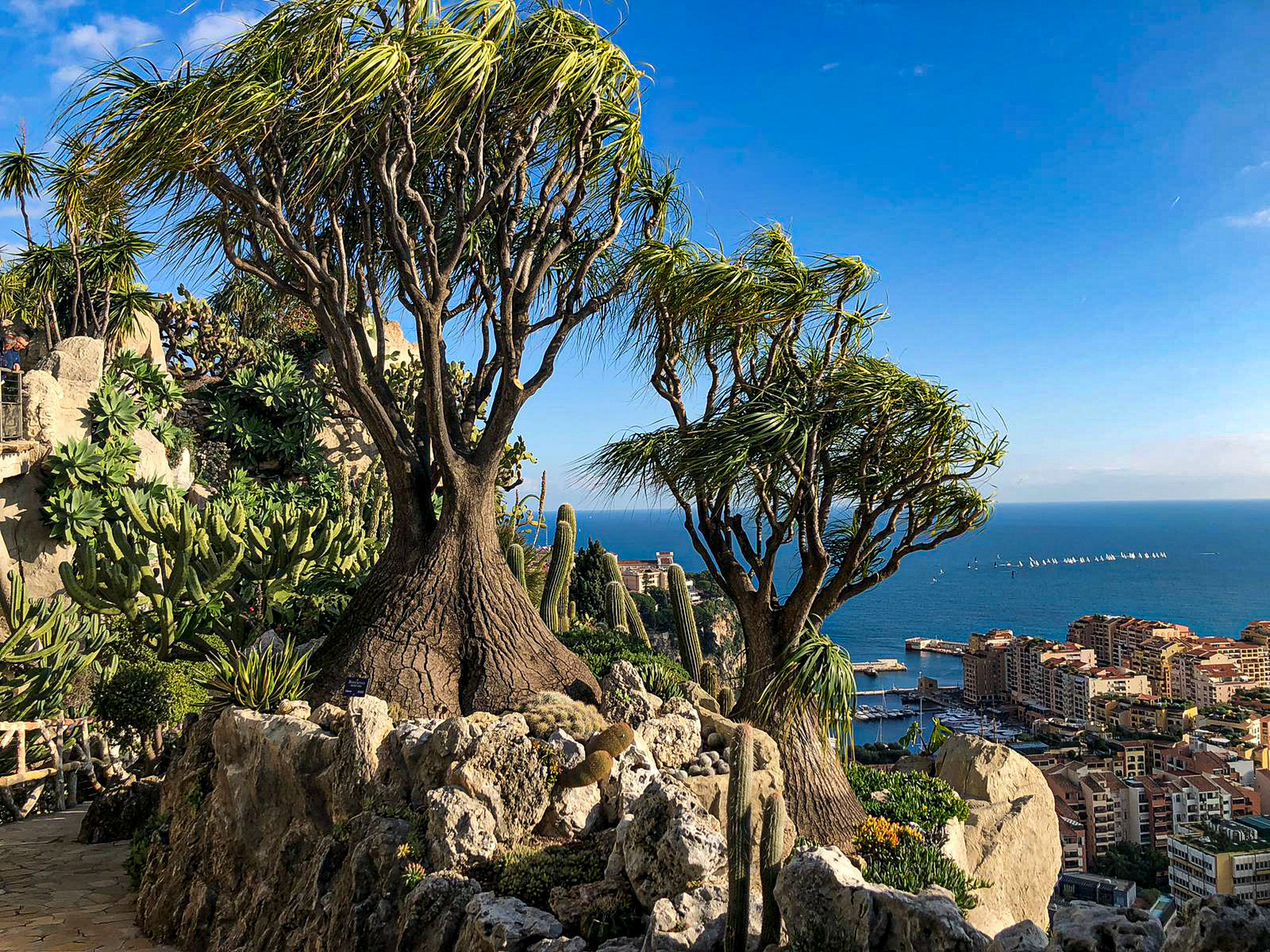 tree, plant, nature, architecture, sky, sea, water, city, building exterior, built structure, day, beauty in nature, rock - object, no people, rock, scenics - nature, land, solid, building, outdoors, cityscape