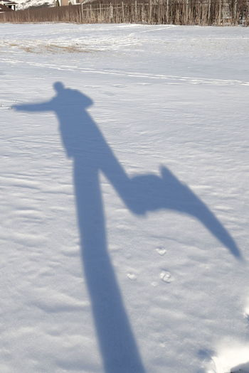 Shadow of person on snow covered landscape