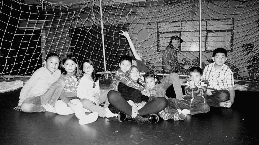 Brincolin Jumping Spider Niños