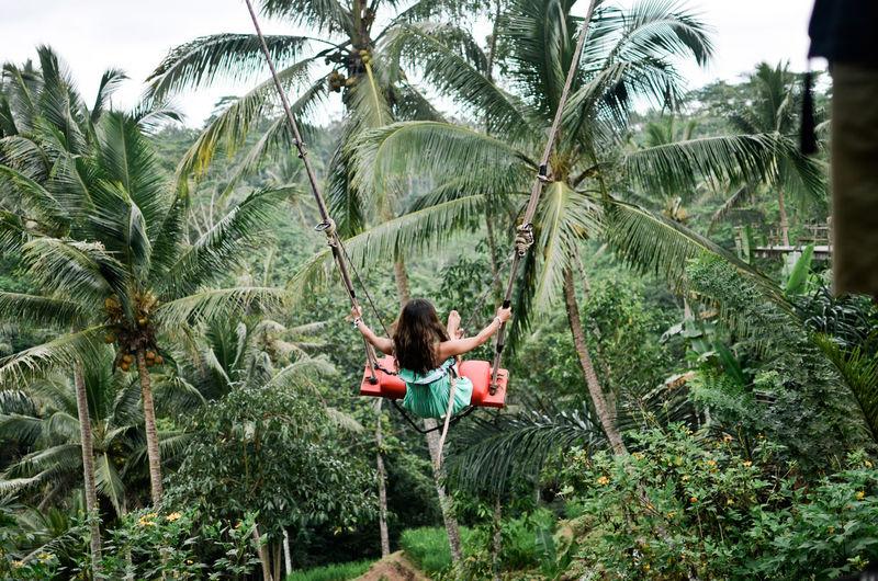 People on palm tree