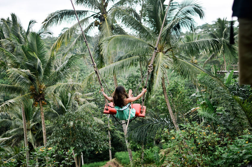 Extreme EyeEm Nature Lover Freedom Ubud, Bali Casual Clothing Day Green Color Into The Sky Leisure Activity Nature Outdoors Palm Tree Swing Tranquil Scene Tree