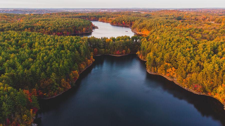 Golden hour lake