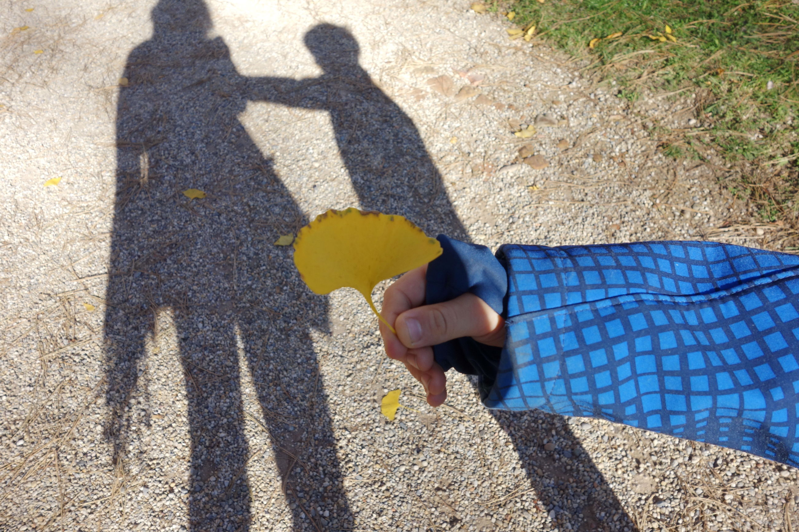 shadow, sunlight, standing, road, street, high angle view, person, holding, yellow, day, focus on shadow, outdoors, gesturing, footpath, toddler