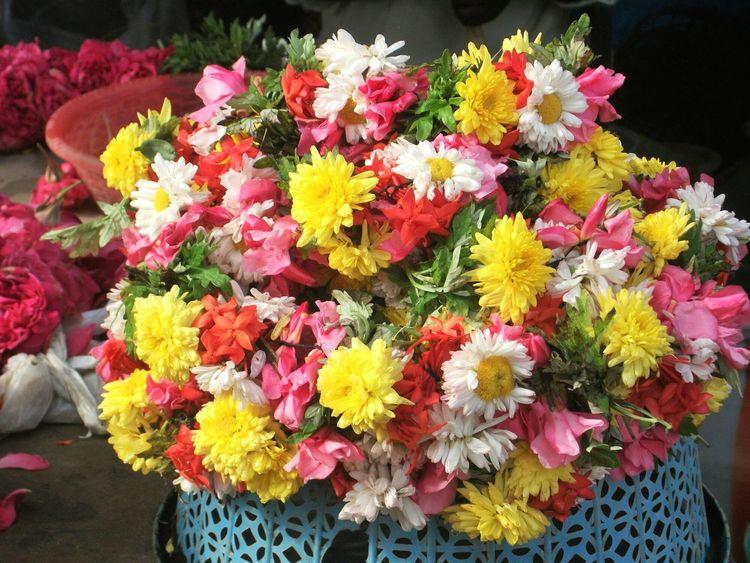 Flowers Fleur ♡ Fleurs India Yellow Flowers Jaune🌻 Pink Flower Pink Rose White Flower Blanc Red Flower Rouge Fleur