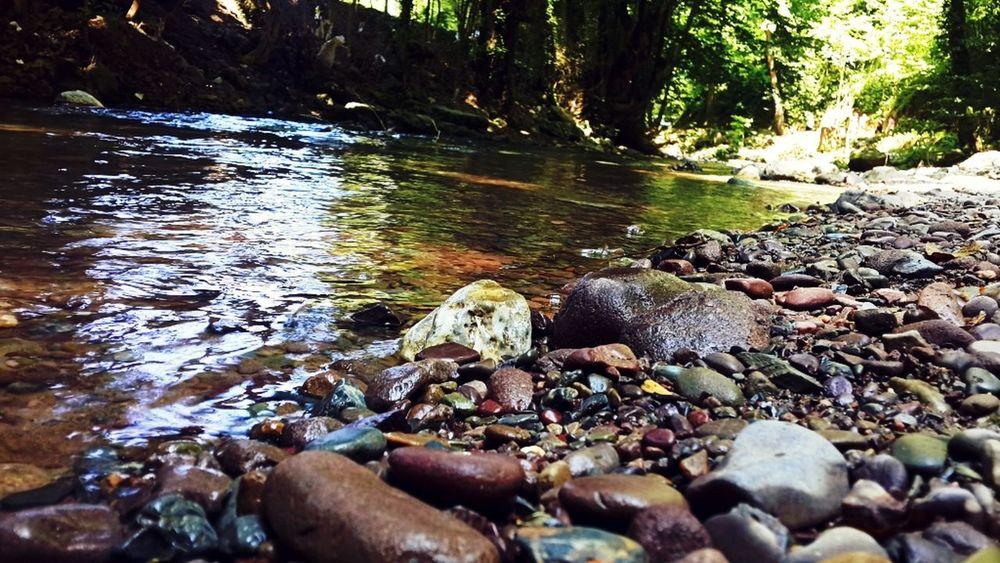 Nature Photography River Rock - Object Freelance Life Freedom Green Green Green!  Huzurvesonsuzluk Akarsu Taşlar Çakıl Taşları Berrak Durusu Yaz Tatil