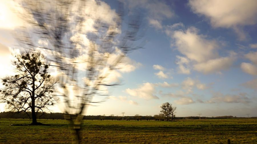 Ontheroad Sky Cloud - Sky Field Landscape Plant Environment Tranquil Scene Land Tranquility Beauty In Nature Scenics - Nature Nature Tree Rural Scene No People Agriculture Growth Day Grass Farm