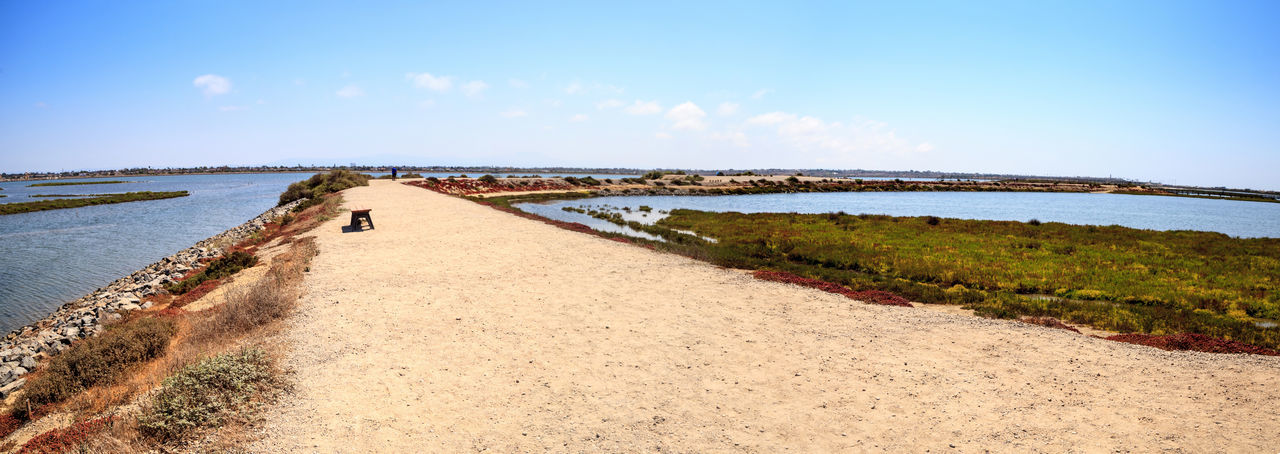 Path along the peaceful and tranquil marsh of Bolsa Chica wetlands in Huntington Beach, California, USA Bolsa Chica Bolsa Chica Nature Preserve Coastline Huntington Beach Marsh Nature Orange County Ny Panorama Panoramic Path Bird Bolsa Chica Wetlands Coastal Day Egret Great Egret Hiking Trail Journey Landscape Nature Outdoors Panoramic Landscape Sky Trail Water
