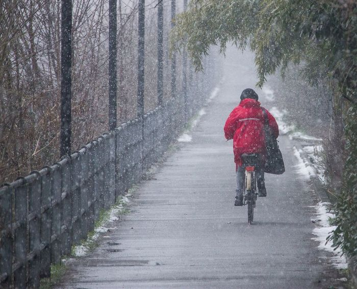 a girl biking in the snow Red Red Color Red Cloak Red Cloth River Riverside Bike Snow Men Cold Temperature Winter Full Length Sport Rear View Motion Weather