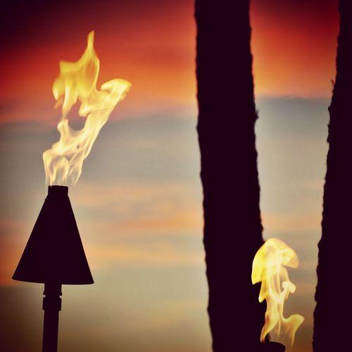 Hawaii Torches