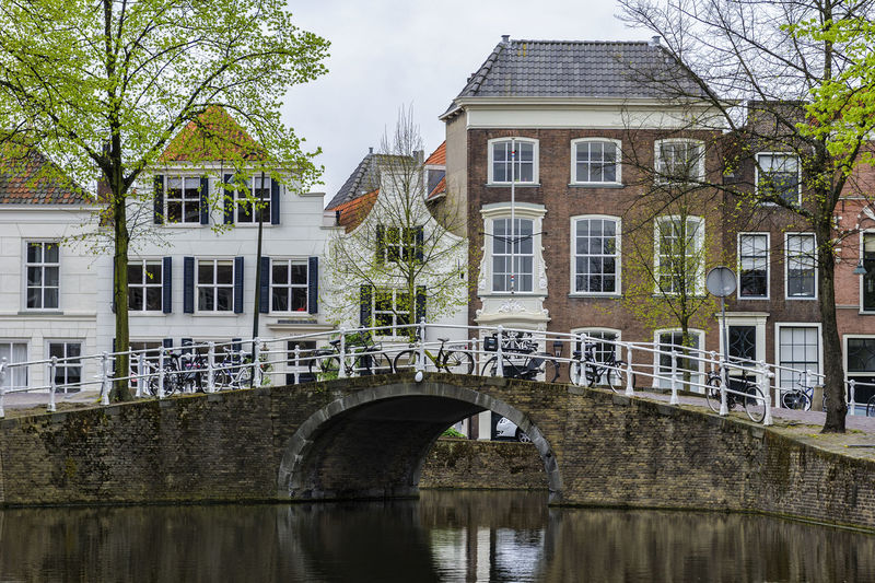 Delft, Netherlands Built Structure Architecture Building Exterior Building Water Bridge Tree Connection Bridge - Man Made Structure Plant River Residential District Nature Waterfront Arch Reflection Transportation Day No People Outdoors Arch Bridge Row House