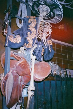 35mm Film Film Photography Analogue Photography Skeleton Cowboy Halloween Cowboy Hat Saddle Western Gunslinger  Spooky Macabre Flash Photography Saloon Bar Nightlife Weird Bizarre Skull Dead