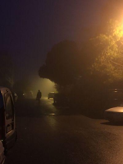 Foggy Morning Fog Silhouette