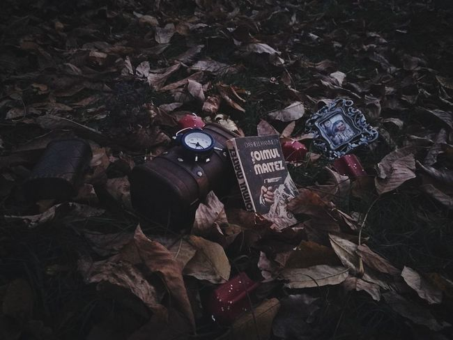 Twilight Old-fashioned Outdoors Autumn Dark Night Autumn Leaves reeding a book Autumn Collection Dry Leaves Clock Beauty In Nature No People Book Chests Canddle  Oldtimer EyeEm Best Shots
