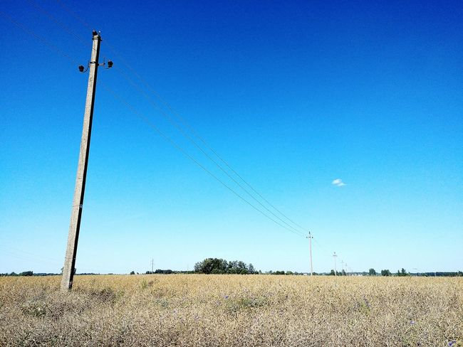 Rural scene in fields Cable Electricity  Farming Power Line  Telephone Line Agriculture Rural Scene Nature Technology Electricity Pylon Growth Agriculture Lithuania Fuel And Power Generation Crops Harvesting Landscape