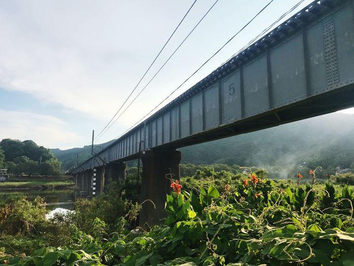 岩徳線 Raylway Iron Bridge Train 鉄橋 岩徳線 Iwakuni Japan Yamaguchi, Japan Evening 夕暮れ 黄昏時 鉄道 Thecountryside 田舎