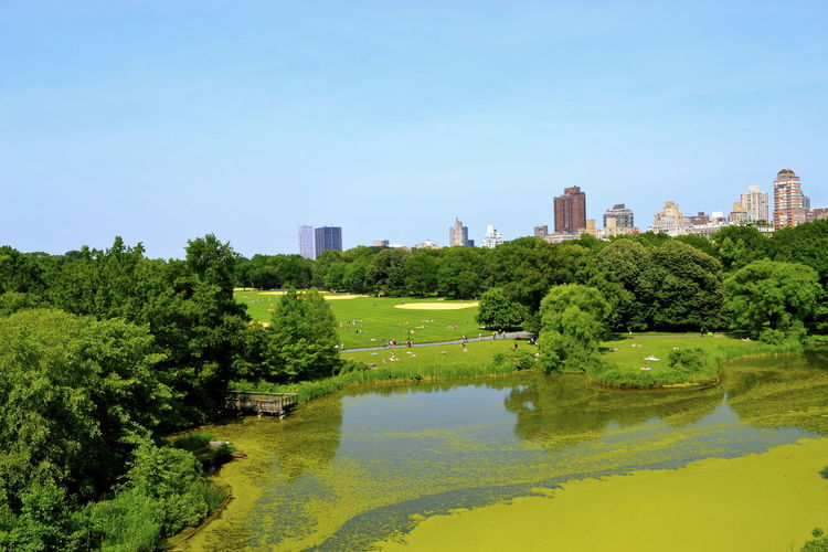 Scenic View Of Park By River Against Clear Sky