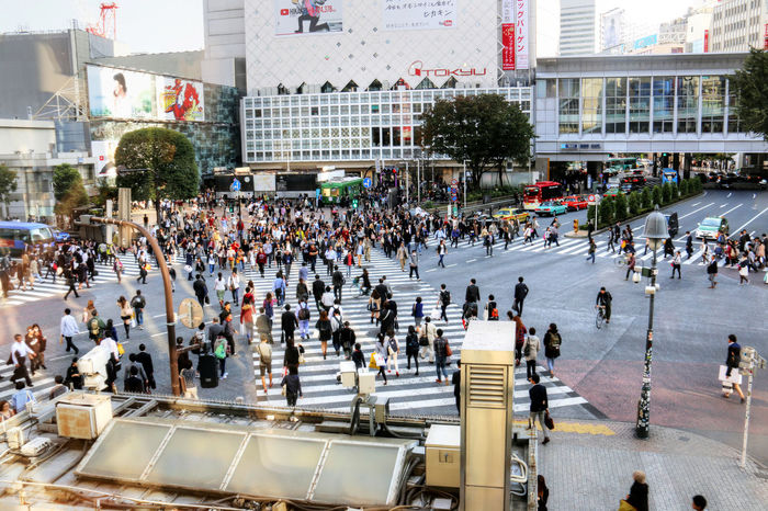 Busy Busy Street City Crowd Day Japan Junction Large Group Of People Outdoors People Shibuya Crossing Tokyo Traffic Lights