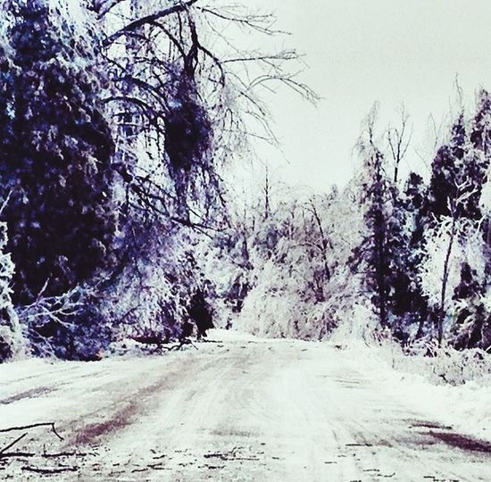 Icestorm from a few years ago Ice Storm Winter Winter 2013-2014♥ SO COLD