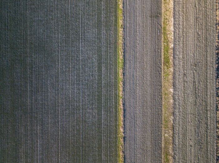 Lines No People Environment Nature Outdoors Zeeland  Landscape Scenics - Nature Rural Scene The Netherlands Nederland Field Land Day Full Frame Pattern Backgrounds Textured  Close-up Plant Green Color Textured  Directly Above Gray Textile Material Wool Abstract Man Made