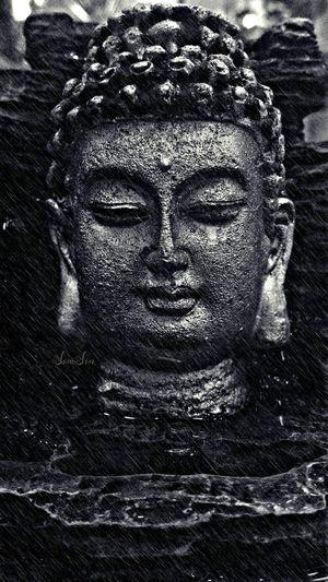 The Tongue is like a sharp knife.. Kills without drawing blood. Buddha Fortheloveofblackandwhite EyeEm Bnw Kik