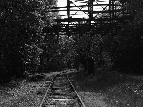 dépôts trains Live For The Story