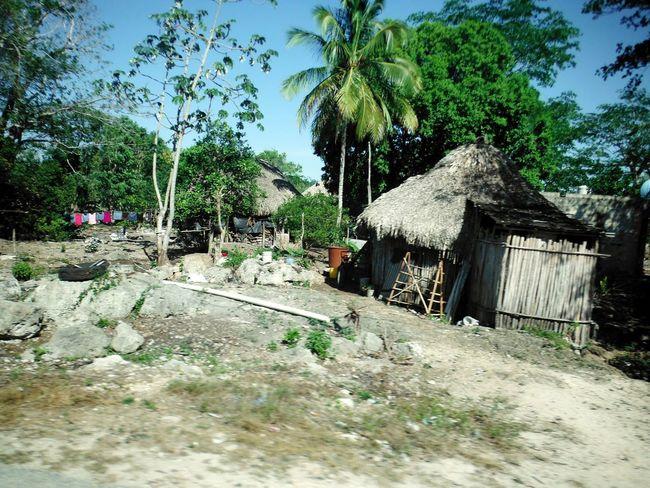 Yucatan Mexico Mexico Huts Poverty