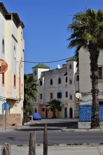 Housing and architecture of Morocco - in the town of Essaouira. Building Exterior Architecture Built Structure Building Palm Tree Tree Sky Nature Plant Tropical Climate City Residential District Day Sunlight Blue Clear Sky Street No People Outdoors Footpath Essaouira Housing Settlement Morocco