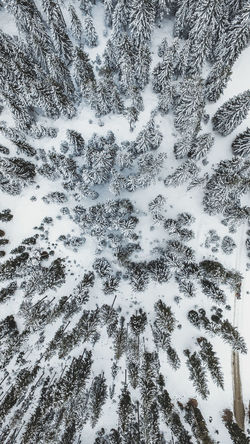 Snow covered forest from above in Austria. Took my drone out for a flight in this white spring morning. DJI Mavic Pro DJI X Eyeem Drone  Nature Nature On Your Doorstep Nature Photography Snow ❄ Winter Wintertime Dji Drone Photography Dronephotography Droneshot Forest Forest Photography Natgeo Natur Nature_collection Nature_perfection Naturelovers Naturephotography Snow Spring Springtime Winter Wonderland