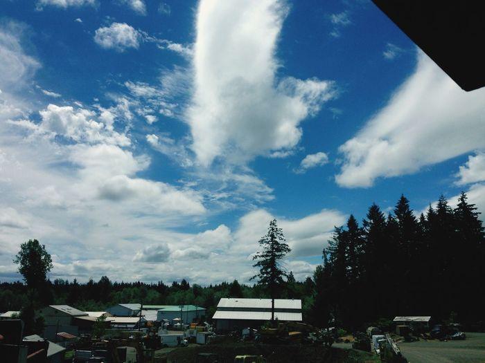 Beatific sky