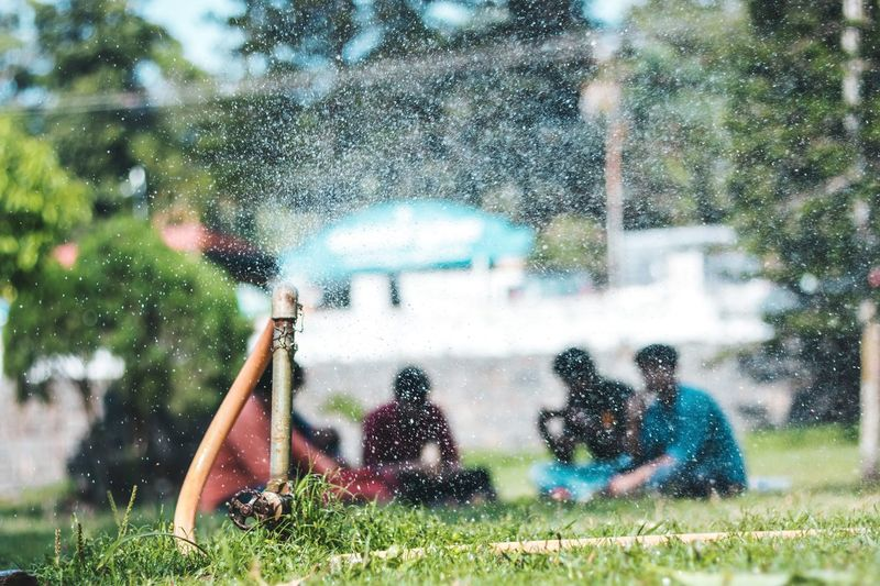 Travel Grass People Bokeh Selective Focus Yercaud Travel Destinations Nature Lush Pipe Garden Sitting Relaxing Park Rejuvenation Colorful Water Tree Spraying Grass Sky Sprinkler Water Drop Watering Detail Droplet Garden Hose Irrigation Equipment Blooming Dew