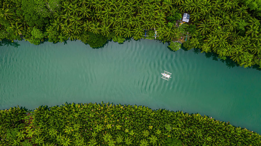 Aerial view of boat in sea against trees