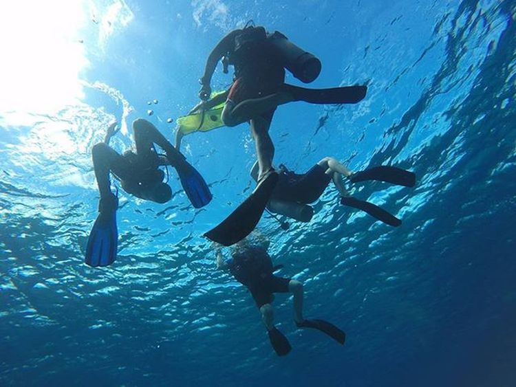 No dive no life It's your higlight for Lombok holiday. Book: scubasurf-lombok@hotmail.com PH: +6281 917 900 727 Agushariantophotography Livingthedream Scubasurflombok Lombokisland Diving Snorkling Bluewater Bluesky
