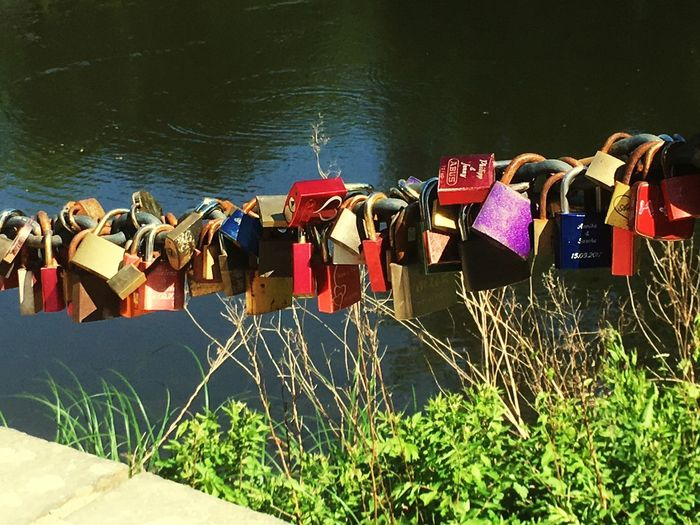 Padlocks hanging on railing by river
