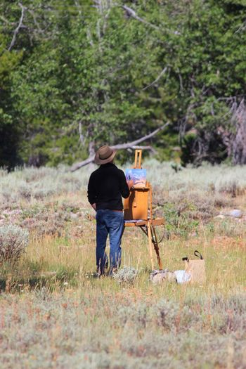 Full Length Rear View Of Man Painting On Grassy Field