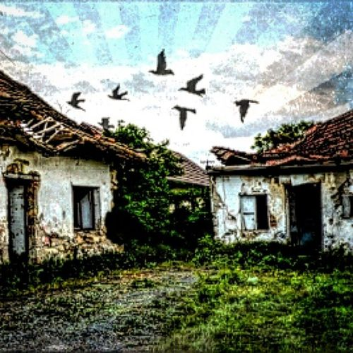 Made with Pixlr Pixlrgibson Edit Edited Instagram Ikozosseg Magyarország Ig_magyarorszag Sajatkep Myphoto Arte Art Iponthu Paint Painting Ruin Doors Windows Countryside Mik Colorful Sky Birds Stage6plus