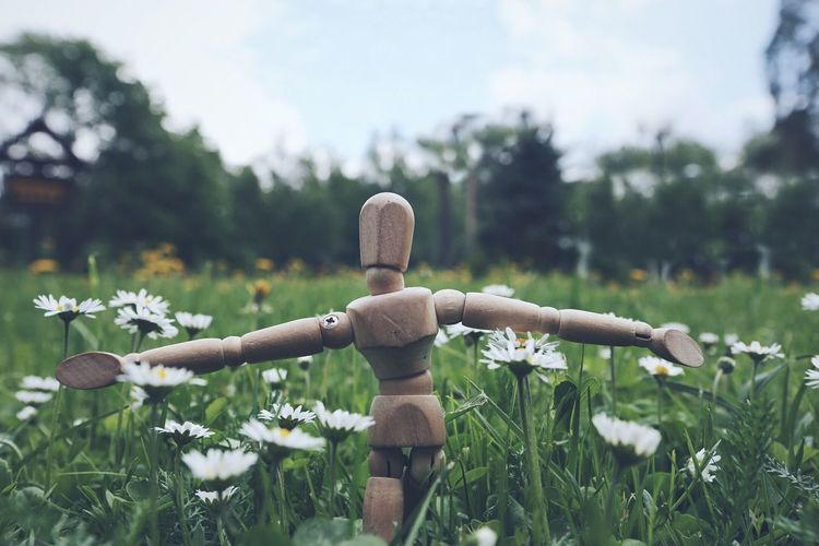Doll On Field