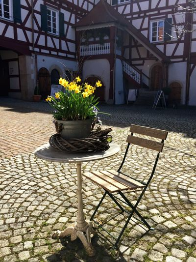 Absence Architecture Built Structure City Day Empty Footpath Front Or Back Yard Green Color Growing Growth Innenhof Nature No People Outdoors Pavement Plant Schloß Gomaringen Stairs Table Walkway