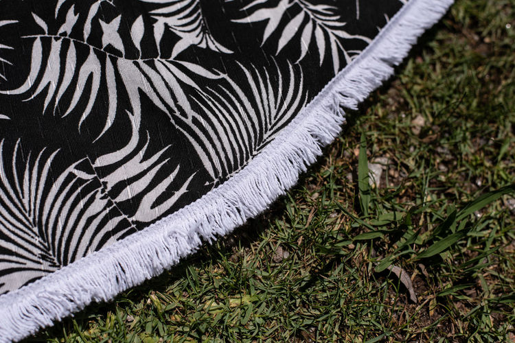 Plant Grass No People High Angle View Nature Day Land Growth Field Close-up Pattern Vertebrate One Animal Outdoors Textile Animal Green Color Animal Themes Mammal Domestic Animals