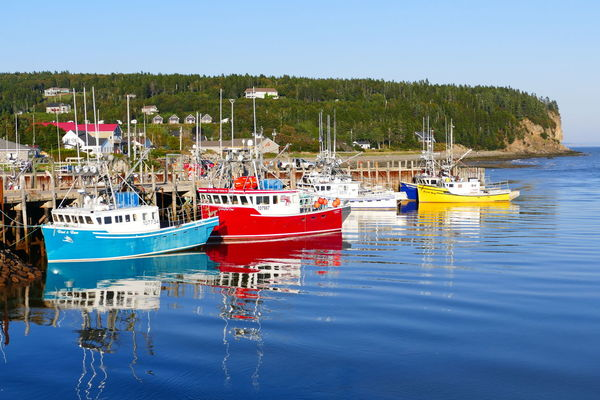 colourful fisherboats Canada Clear Sky Colorful Colourful Fisherboats  Fishermen Harbor Idyllic Nautical Vessel New Brunswick Outdoors Reflection Waterfront