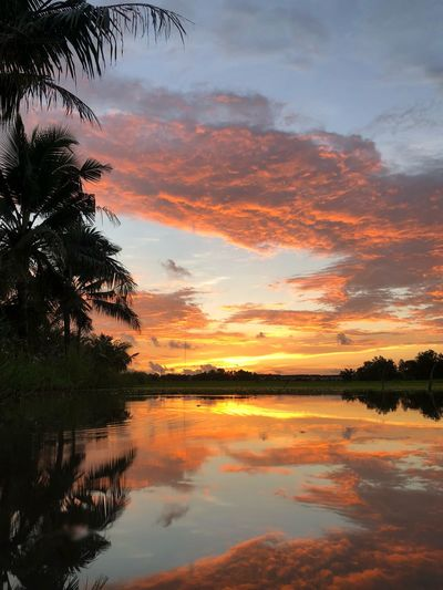 Sunset Water Sky Beauty In Nature Reflection Scenics - Nature Tranquility Silhouette Waterfront No People Plant Non-urban Scene Orange Color Tree Nature Tranquil Scene Idyllic Romantic Sky Cloud - Sky Lake