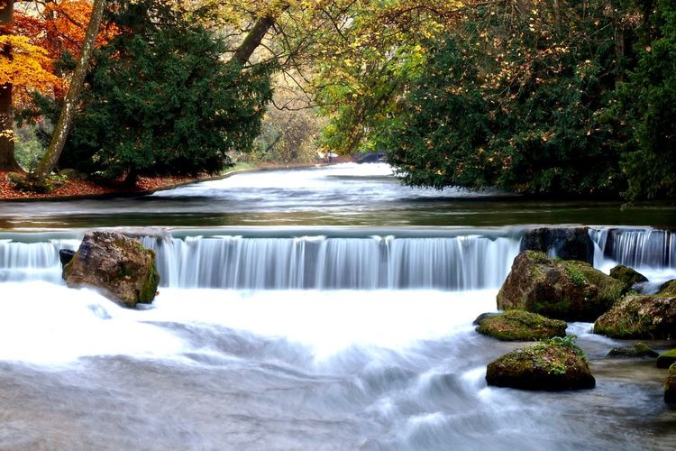 Smooth falls at Englischer Garten. Nature Scenics Tree Beauty In Nature Water Waterfall Motion Tranquil Scene No People Idyllic Tranquility Long Exposure Outdoors Forest Day Freshness Slow Shutter Waterfall Smooth Water Smooth Waterfall Smooth Moving Water Munich Eisbach Englischer Garten