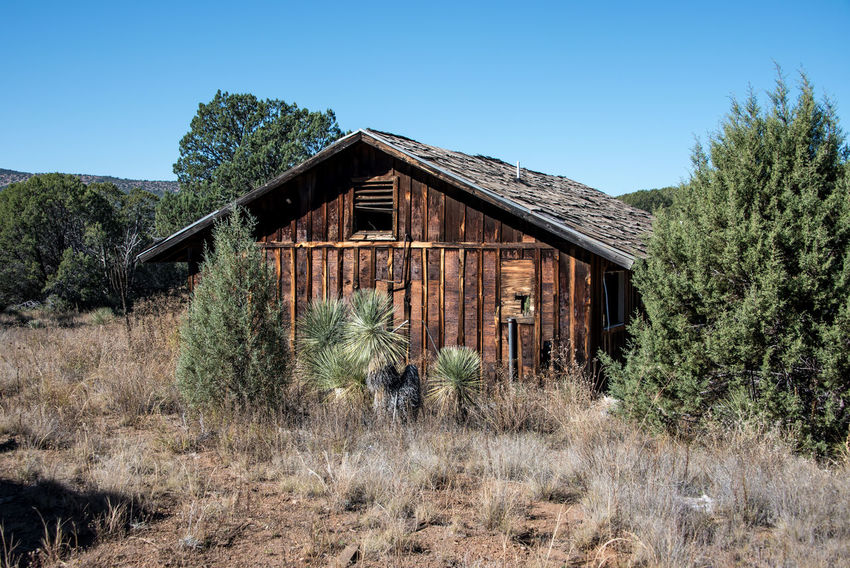 Abandoned cabin in the forest Abandoned Architecture Blue Building Exterior Built Structure Cabin Clear Sky Day Desert Dilapidated Empty Growth Haunted Nature No People Old-fashioned Outdoors Scenics Shrubs Sky Tree Vacant Wood - Material